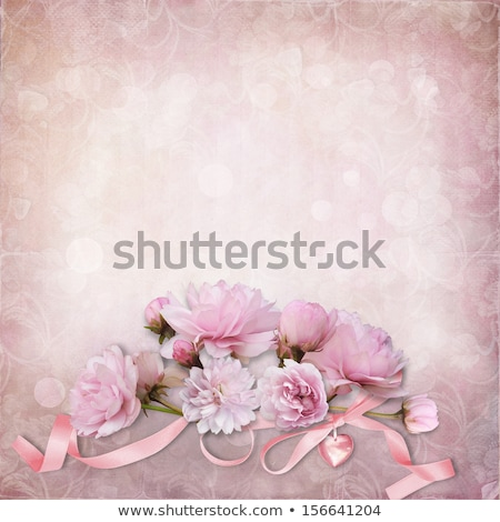 Torn rose background. Stock photo © Hermione