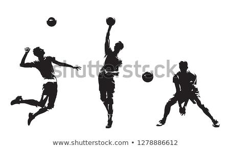 voleybol · siluetleri · ayarlamak · mutlu · spor · vücut - stok fotoğraf © kaludov