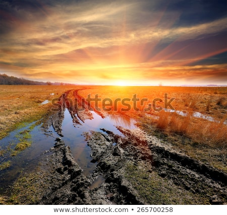 Foto stock: Estrada · campo · chuva · molhado · agrícola