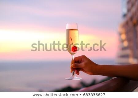 rózsa · pezsgő · izolált · fehér · étel · szemüveg - stock fotó © karandaev