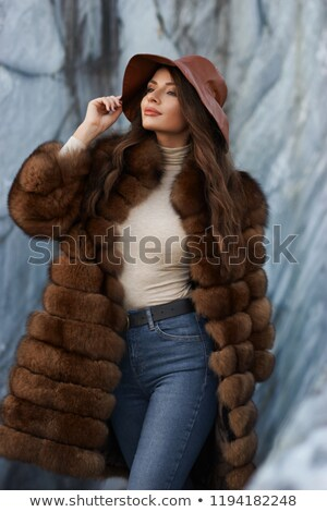 Dość brunetka futra elegancki szary Zdjęcia stock © acidgrey