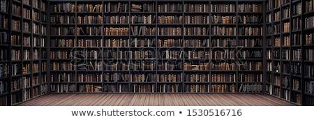 Prateleira de livros luz álcool quadro de imagem design de interiores clip-art Foto stock © zzve