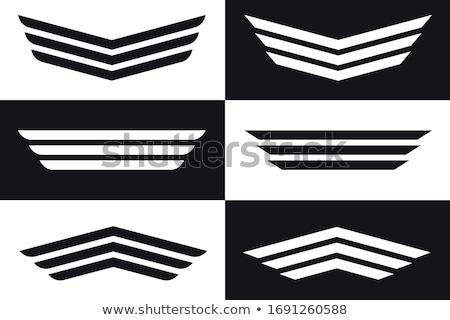 Falcon volo tattoo bianco nero foto cielo Foto d'archivio © Move_On