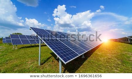Fotovoltaik elektrik santralı silikon güneş enerjisi yeşil mısır Stok fotoğraf © CaptureLight