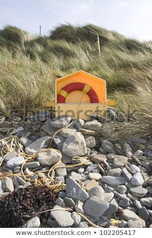 orange lifebuoy on rocky beal beach Stock photo © morrbyte
