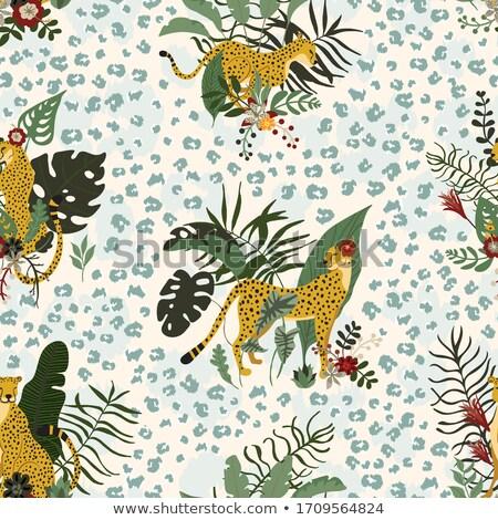 Stock fotó: Cheetah Wild Cat