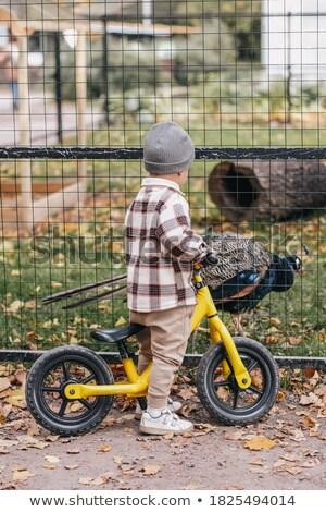 Bebê menino olhando pavão jardim zoológico beleza Foto stock © Nejron