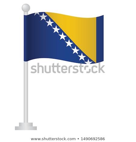 bosnia and herzegovina small flag on a map background stock photo © tashatuvango