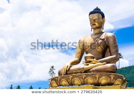 Buda budista descobrir verdade herói Foto stock © LAMeeks