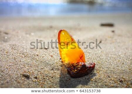 Baltic Amber Spider Stock photo © Kacpura