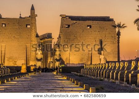 Gündoğumu tapınak luxor Mısır güneş seyahat Stok fotoğraf © eleaner