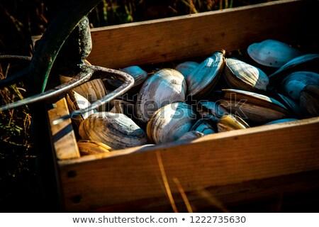Fraîches rustique panier blanche alimentaire nature Photo stock © Photooiasson