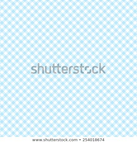 Bavarian Blue Checkered Tablecloth Stock photo © stevanovicigor