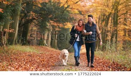 Pár sétál kutya város szeretet épület Stock fotó © Vg