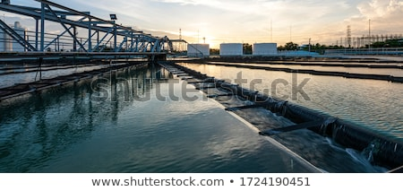 Wate Water From The Sewer As Pollution Concept Stock photo © stevanovicigor