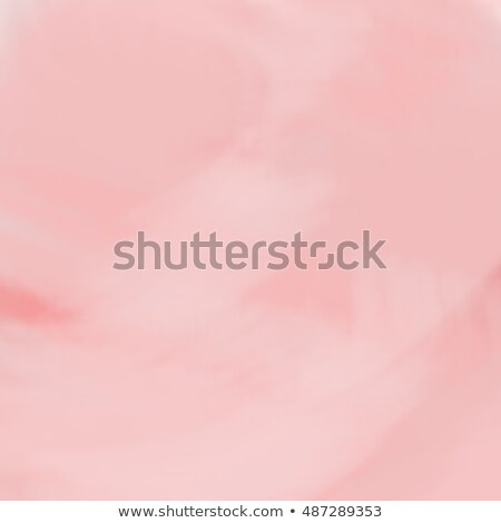 Colorful plate on rustic pink background Stock photo © BarbaraNeveu