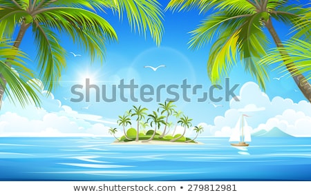 Stock fotó: Tropical Island Vector