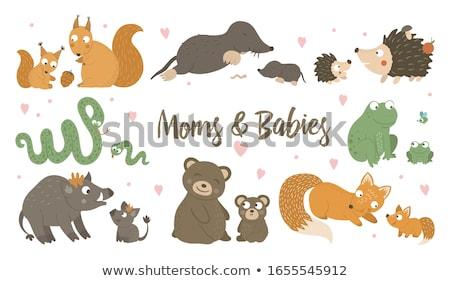 Familie illustratie natuur aarde grappig dier Stockfoto © adrenalina