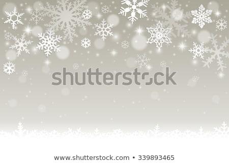 Silver snow flake pattern design Stock photo © wavebreak_media