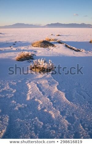 塩 · 日没 · 劇的な · 雲 · 自然 · 風景 - ストックフォト © cboswell