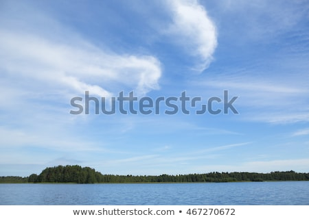 Nice blue sky with clouds formation and trees Stock photo © jeancliclac