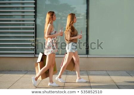 Gêmeo meninas família amor moda beleza Foto stock © Paha_L