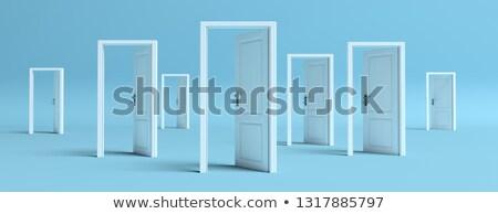 many open doors Stock photo © get4net