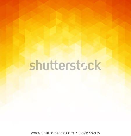 Hot mozaiek sjabloon eps 10 vector Stockfoto © beholdereye