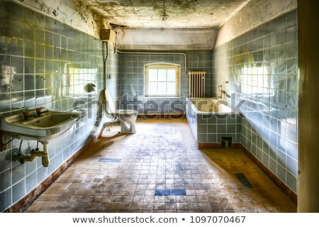 Velho banheiro necessidade banheiro trabalhar Foto stock © backyardproductions