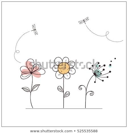 Rabisco flores conjunto isolado gráfico Foto stock © pakete
