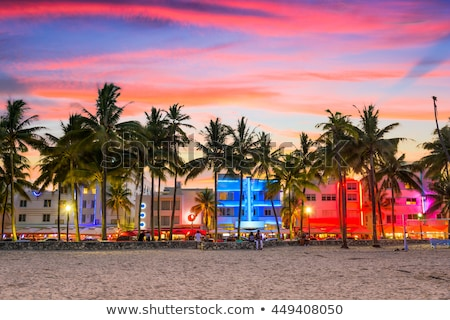 Stock Photo Miami Beach South Sunset Palm Trees In Ocean Drive Florida