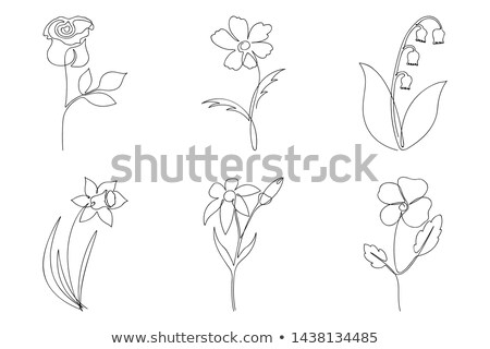 Stock photo: Set of different flowers