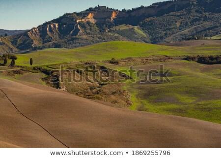 Toskana · manzara · ağaçlar · çiftlikleri - stok fotoğraf © digifoodstock
