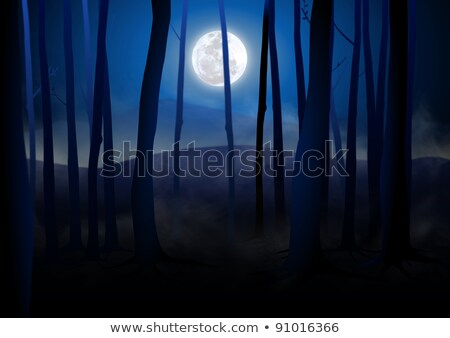Nature scene with fullmoon and forest Stock photo © bluering