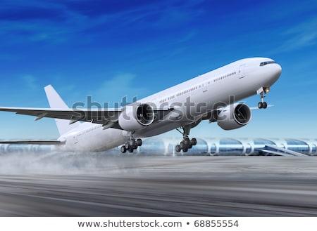 着陸 · 平面 · 飛行機 · 曇った · 空 · シルエット - ストックフォト © ssuaphoto