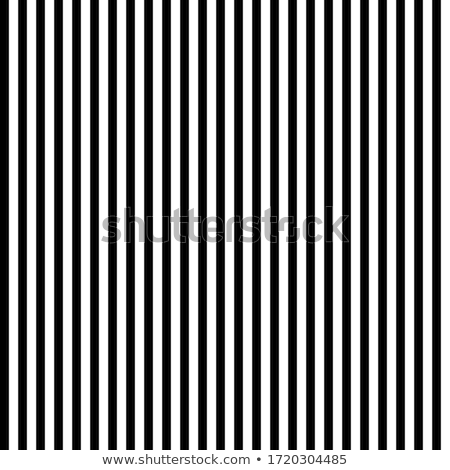 vector seamless black and white vertical stripes pattern stock photo © creatorsclub