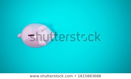 Protect the financial and economic serenity Stock photo © alphaspirit