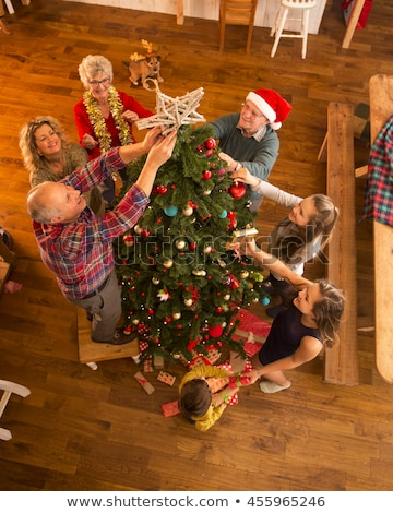 birds family at christmas stock photo © adrenalina