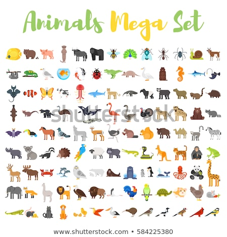 Stock photo: Vector flat style set of animal web icons.