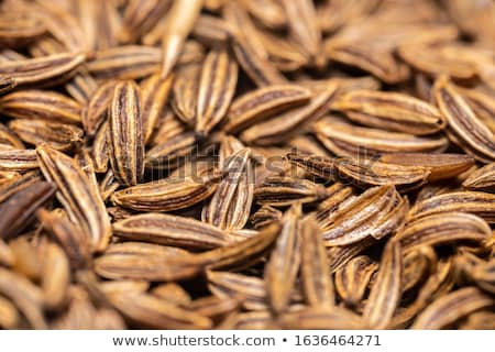 detail of caraway seeds stock photo © digifoodstock