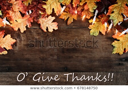 fall leaves lights and give thanks text over wooden background stock photo © stephaniefrey