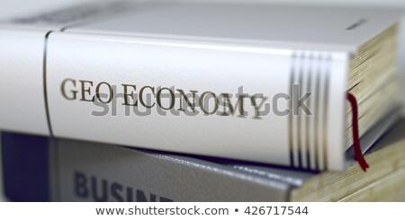 Gazdaság könyv cím boglya könyvek közelkép Stock fotó © tashatuvango