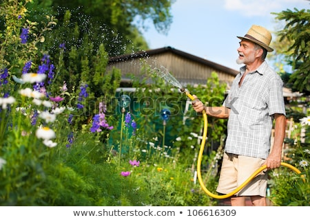 Senior man watering plants with a hose Stock photo © wavebreak_media