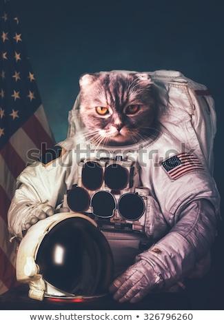 Astronaute chat vaisseau spatial silhouette homme animal Photo stock © ConceptCafe