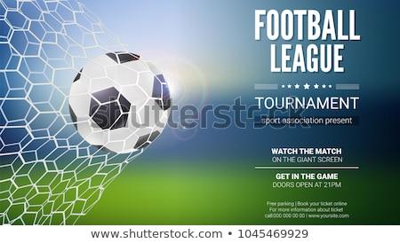 Futball futball verseny liga világ háttér Stock fotó © SArts