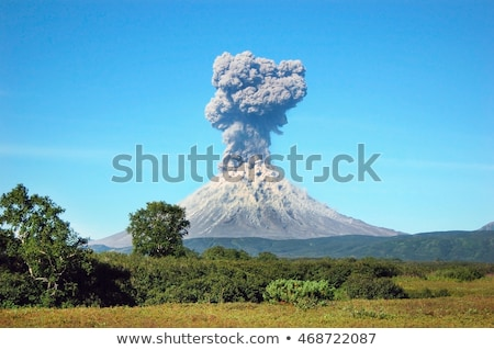 Vulkaan uitbarsting bos illustratie water brand Stockfoto © bluering