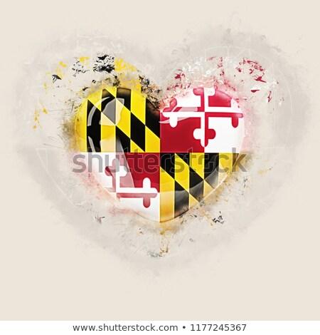 szeretet · Maryland · zászló · szív · összes · fehér - stock fotó © mikhailmishchenko