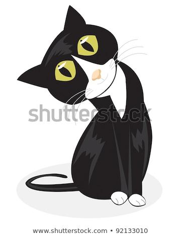 Cartoon kat smoking illustratie dier De ober Stockfoto © cthoman
