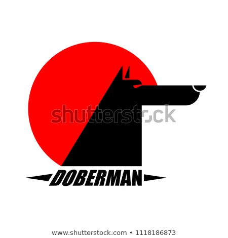 Doberman sign dog protector. Pet Vector illustration Stock photo © MaryValery