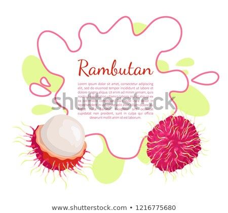 Rambutan Exotic Juicy Fruit Vector Poster Frame Stock photo © robuart